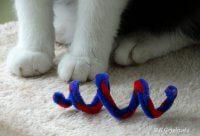 zabawka dla kotów