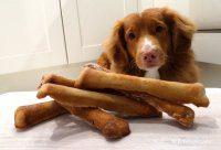 psie ciastka bananowe kosci