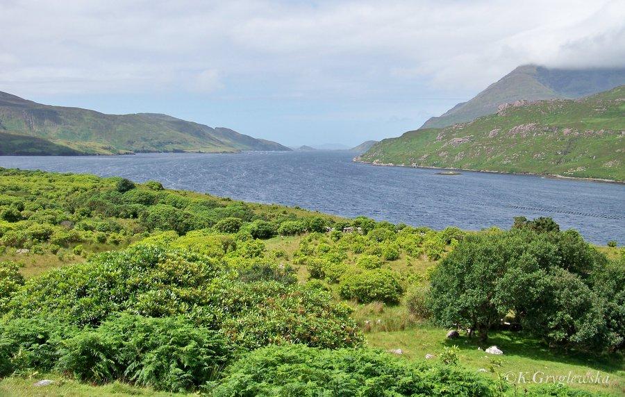 Irlandia Fiord Killary Harbour